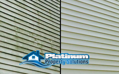don't pressure wash vinyl siding soft wash instead to remove dirt and algae