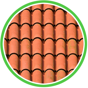 clean tile roof in michigan
